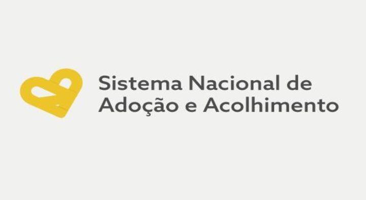 Funcionalidades do Sistema Nacional de Adoção e Acolhimento